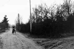 Tranebærvej